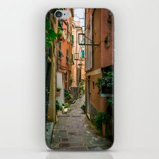 Vernazza, Cinque Terre, Italy iPhone & iPod Skin