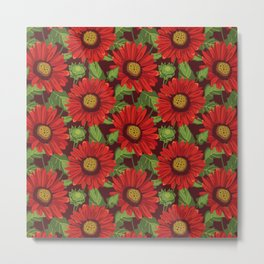 Gaillardia Arizona Red Shades. Flowers illustration Metal Print