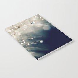 dandelion evening blue Notebook