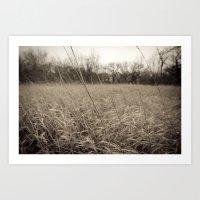 Dark Plains Art Print