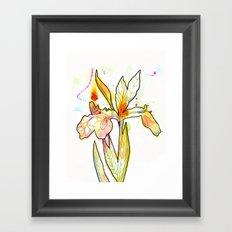 Queen Flower Framed Art Print