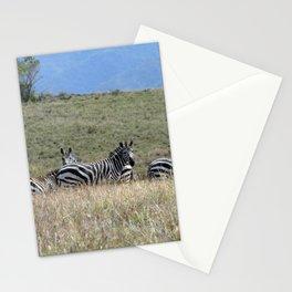 Wild Zebras Grazing, Omo river valley, Ethiopia, Africa Stationery Cards