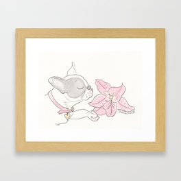 Pretty French Bulldog and the Pink Lily Framed Art Print