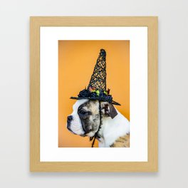 Beautiful Profile of a Bulldog Wearing a Witch Hat for Halloween Framed Art Print