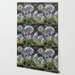 Flower bubbles Wallpaper
