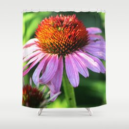 Cone Flower or Echinacea in Horicon Marsh Shower Curtain