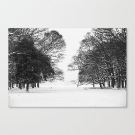 Winter in the Park - Print (RR 271) Canvas Print
