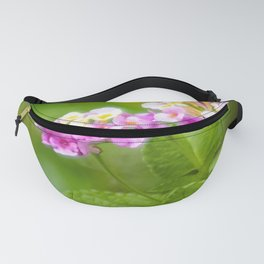 Pink Flowers and Butterfly Fanny Pack