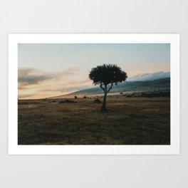 Masai Mara National Reserve VIII Art Print