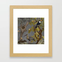 assembly of birds and one cute agouti Framed Art Print