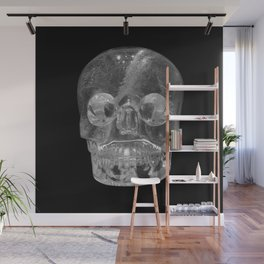 Crystal Skulls | Crystal Skull Museum Wall Mural