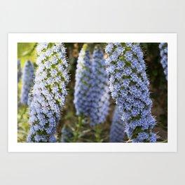 Longwood Gardens Orchid Extravaganza 53 Art Print