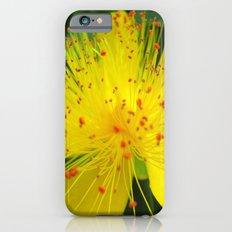 Flower I iPhone 6s Slim Case
