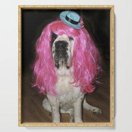 Funny St Bernard dog clowning around Serving Tray