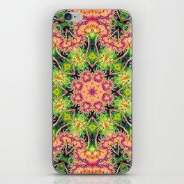 BBQSHOES: Kaleioscopic Fractal Mandala 1543K2 iPhone Skin