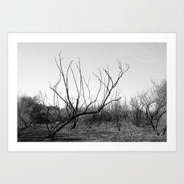 Wildfire in the Desert Art Print
