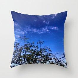 Nature Meets Sky Throw Pillow
