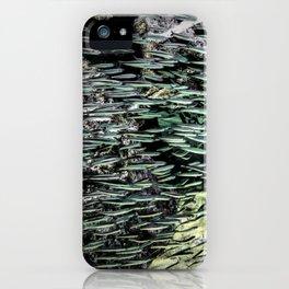 Shimmering Shoal iPhone Case