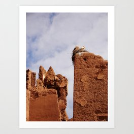 Storks on the ruins of the Sultan's Palace Art Print