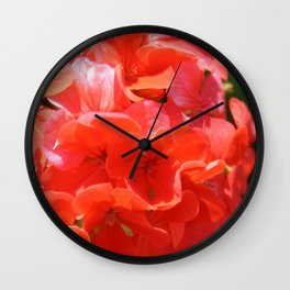 Zonal Geranium Pelargonium hortorum Wall Clock