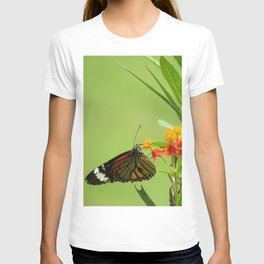 summer in India T-shirt