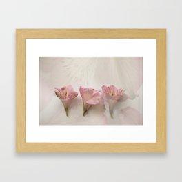 Trader Joes Flowers 1 Framed Art Print