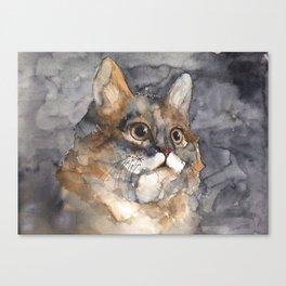 CAT #1 Canvas Print