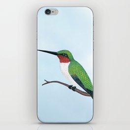 the studious male (ruby-throated hummingbird) iPhone Skin