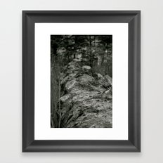 Bumpy Bark Framed Art Print