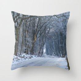 A Winter Wilderness II Throw Pillow