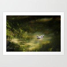 Duck in the Spotlight Art Print