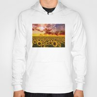 sunflowers Hoodies featuring sunflowers by Bekim ART