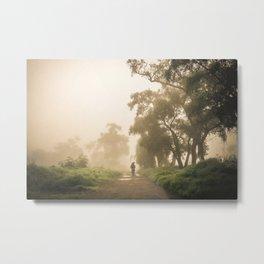 Morning in the fog Metal Print