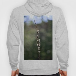 Pussy willow Hoody