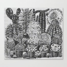 Cactus and Succulents Canvas Print