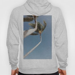 Crooked Palm Trees Hoody