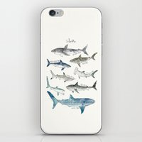 sharks iPhone & iPod Skins featuring Sharks by Amy Hamilton