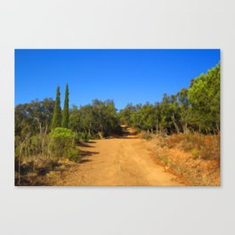 On The Trail Canvas Print