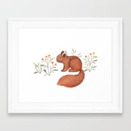 Furry Squirrel Framed Art Print