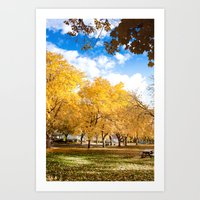 Tree in a Park during Fall Art Print