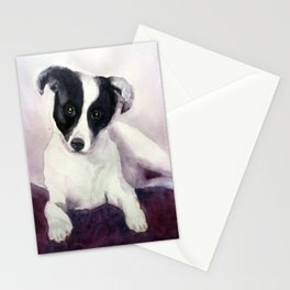 A stray dog up for adoption Stationery Cards