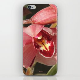 One Orchid on a Line iPhone Skin