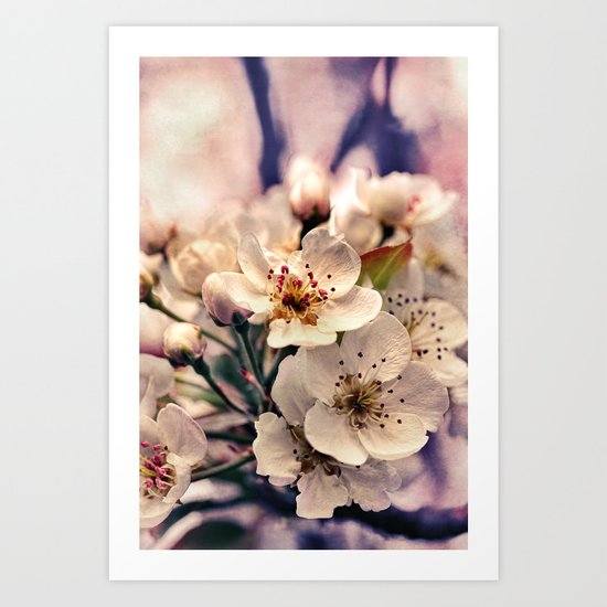 Blossoms at Dusk - vintage toned & textured macro photograph Art Print