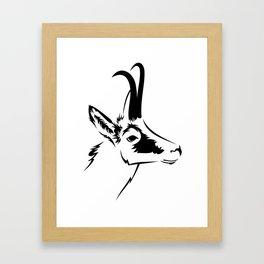 Wild goat Framed Art Print