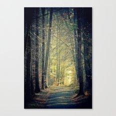 Licht am Ende des Weges Canvas Print