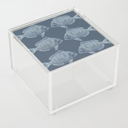 Blue Fish/es Acrylic Box