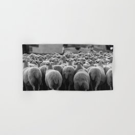 Sheep Hand & Bath Towel