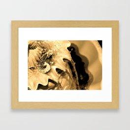 Fountains Framed Art Print