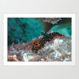 Delightful Nudibranch Art Print