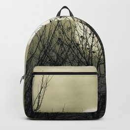 Winter Into Spring Backpack